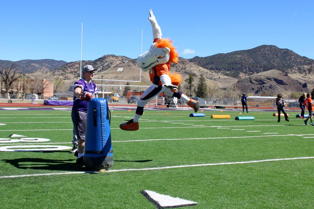 Broncos Mascot